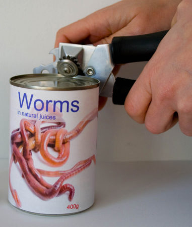 opening-a-can-of-worms-381x450